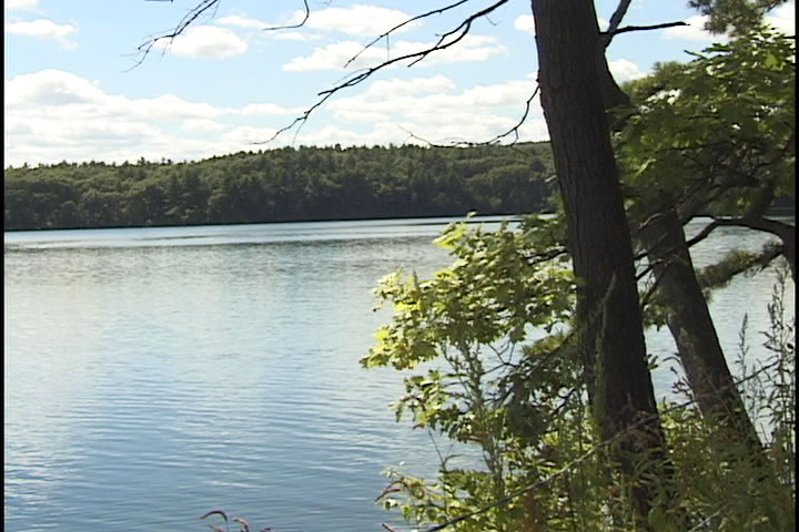 Thoreau & Walden Pond